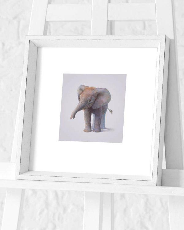 Elephant Preframed Print