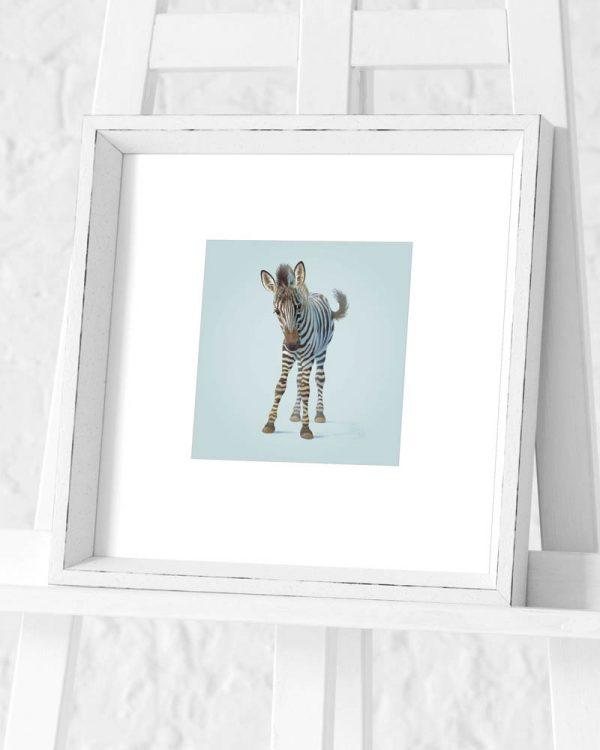 Zebra Preframed Print